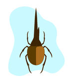 Hercules Beetle Insect. Vector Illustration Stock Illustration
