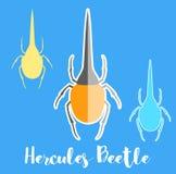 Hercules Beetle Insects Vectors Fotografia Stock