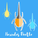 Hercules Beetle Insects Vectors. Illustration Stock Photography