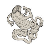 Hercules Fighting  Lernaean Hydra  Drawing Stock Photo