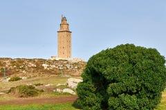 Hercules fyr En Coruna, Spanien Royaltyfri Foto
