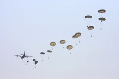 Hercules plane drops many parachute troopers Royalty Free Stock Photography
