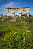Hercules Works House, Volubilis Image stock