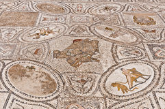 Hercules Works House at Volubilis, Morocco Royalty Free Stock Photo
