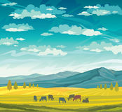 Herd of cows and meadow. Rural summer landscape. Stock Photo