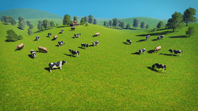 Herd of cows on a pasture aerial view Stock Photography