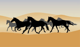 Herd in the desert. Vector drawing herd in the desert Stock Photos