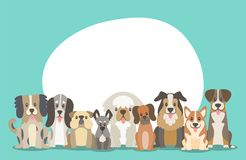 Cute dogs background. Blank space. Herd of dogs sitting in front view position. Background illustration with round blank space in the top for adding text Stock Image