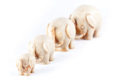 Herd of elephants. A herd of elephants isolated in a white background Stock Photography