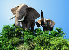 The herd of elephants Royalty Free Stock Images