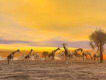 Giraffes in the savannah - 3D render Stock Photo