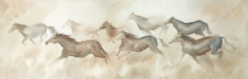 Herd of horses ridding watercolor Royalty Free Stock Image