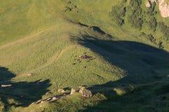Herd of horses, top view. Herd of horses in the mountains. Caucasus, Russia Stock Photo
