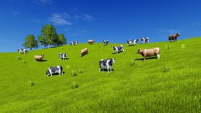 Milk cows graze on green farm grassland. Herd of mottled milk cows graze on green farm grassland under blue sky at summer day. Rural landscape 3D illustration royalty free illustration