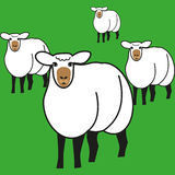Herd of sheep on a pasture. Vector illustration Royalty Free Stock Photography