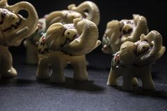 Herd of white-patterned elephants. Side shot. Black Background royalty free stock photography