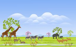 Herd of wild animals In the green grass field There are mountains and clusters in the background royalty free illustration