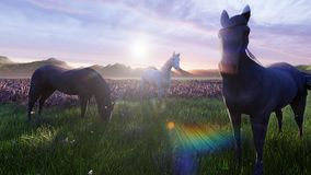 A herd of young horses graze on a picturesque green meadow on a beautiful summer morning. 3D Rendering. A herd of young horses graze on a picturesque green royalty free illustration