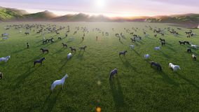 A herd of young horses graze on a picturesque green meadow on a beautiful summer morning. 3D Rendering. A herd of young horses graze on a picturesque green vector illustration