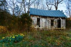 Herdade de Arkansas Fotos de Stock Royalty Free