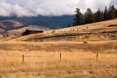 Herdade em Montana. imagem de stock