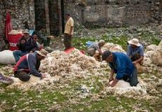 Herdar i den georgiska byn, ledare Royaltyfria Bilder