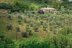 Herde- lantligt landskap med det hemtrevliga traditionella lantgårdhuset i italienare Abruzzo Arkivbilder
