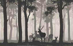 Herde von Rotwild stock abbildung