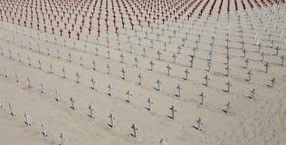 Herdenkingsbegraafplaats op Santa Monica-strand, Californië Royalty-vrije Stock Afbeeldingen