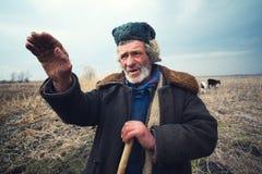 Herder die aan afstand richt royalty-vrije stock fotografie