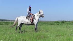 Herder die op wit paard camera bekijken stock footage