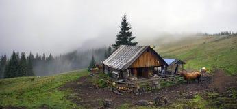 Herders en schapen de Karpaten Stock Afbeelding