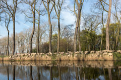 Herding sheep in Flanders. Sheepdogs herding a flock of sheep near the canal of Damme in rural Flanders in Belgium Stock Images