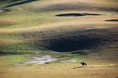 A herdsman of horse in autumn prairie. A herdsman of horse running in prairie in autumn stock image