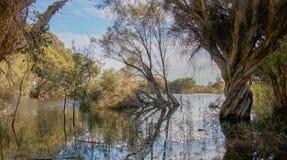 Herdsman Lake Stock Image