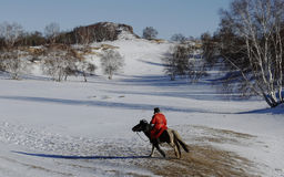 Herdsman in snow field Stock Photos