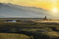 Herdsmen returning from herding sheep, Beautiful sunset, Xinjiang China.