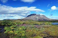 Herdubreid Iceland Stock Photos