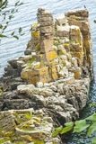 Cliffs by the Baltic Sea on the beautiful island of Bornholm, Denmark, royalty free stock photography