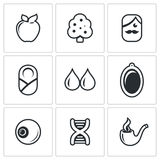 Heredity icons set. Vector Illustration. Stock Images