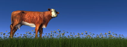 Hereford cow - 3D render Royalty Free Stock Photo