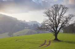 Herefordshire countryside, England Royalty Free Stock Photography