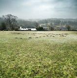 Herefordshire krajobraz Fotografia Stock
