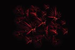 Herein summen Feuerwerksshow laut Stockfotos