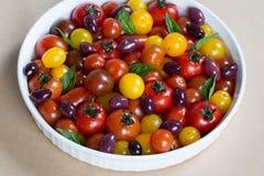 Herencia rústica Cherry Tomato Salad con albahaca y aceitunas Foto de archivo libre de regalías