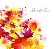 Herfst achtergrond Royalty-vrije Stock Fotografie