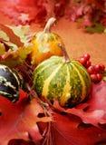 Herfst achtergrond Stock Foto's