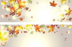 Herfst achtergrond Stock Afbeeldingen