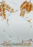 Herfst achtergrond Royalty-vrije Stock Afbeeldingen