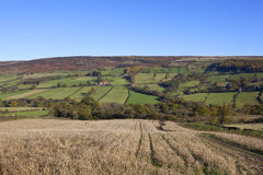Herfst Engels landschap Stock Afbeeldingen